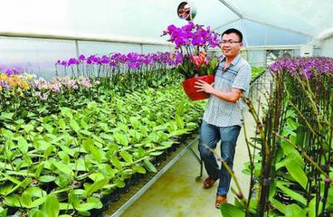 大学生回乡带领农民种地年纯利过千万