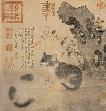 《花下狸奴图》,藏于台北故宫博物院