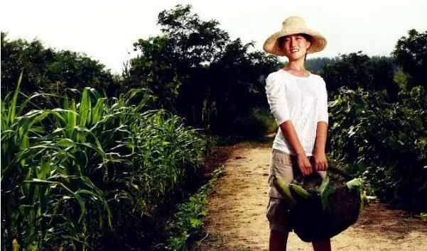 十年农夫,这个清华女博士后,想让更多家庭吃上自然食物,姚晨都带娃去她农场干活!