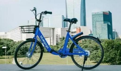 父亲比肩李嘉诚,他与王思聪齐名,花4亿投资小蓝单车却打了水漂