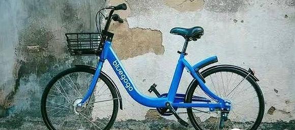 对话小蓝单车CEO李刚:我看见这一代最杰出的头脑毁于疯狂